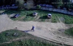 Запись с камеры уличного видеонаблюдения - день