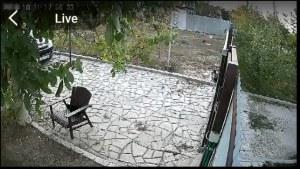 изображение с wi-fi камеры